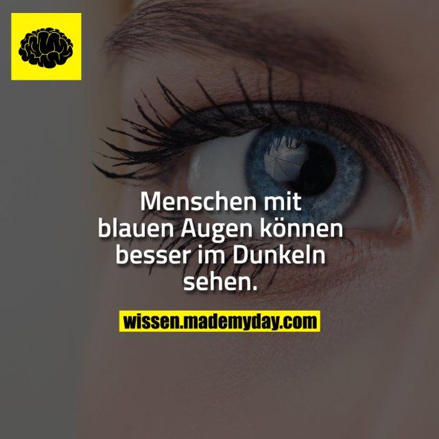 Menschen mit blauen Augen können besser im Dunkeln sehen.