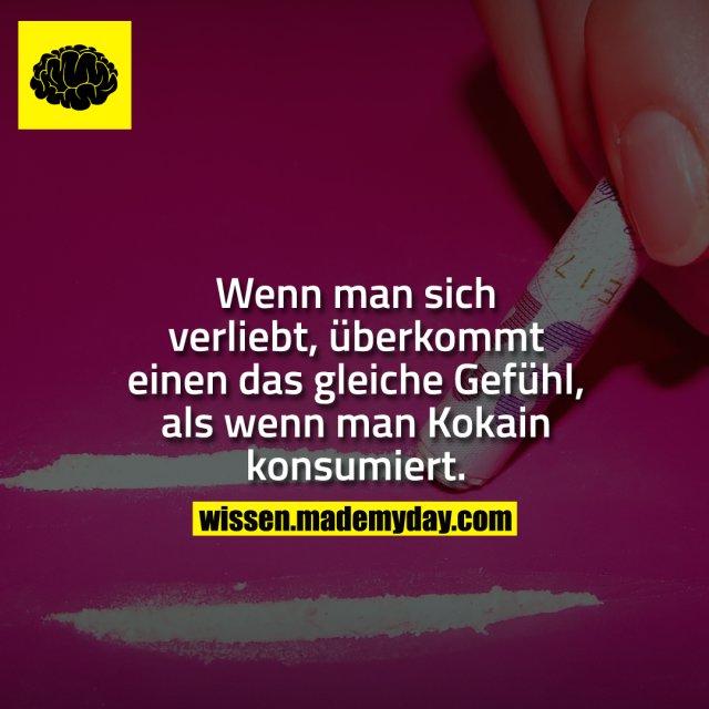 Wenn man sich verliebt, überkommt einen das gleiche Gefühl, als wenn man Kokain konsumiert.