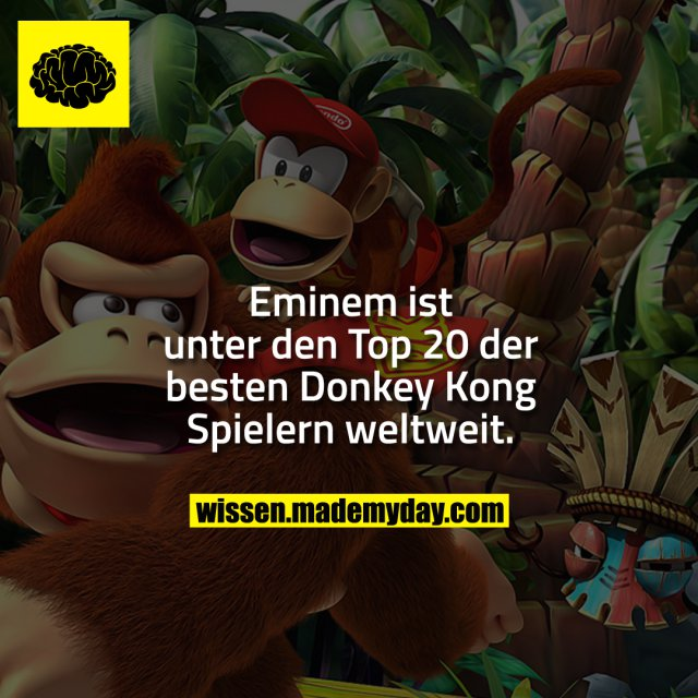 Eminem ist unter den Top 20 der besten Donkey Kong Spielern weltweit.