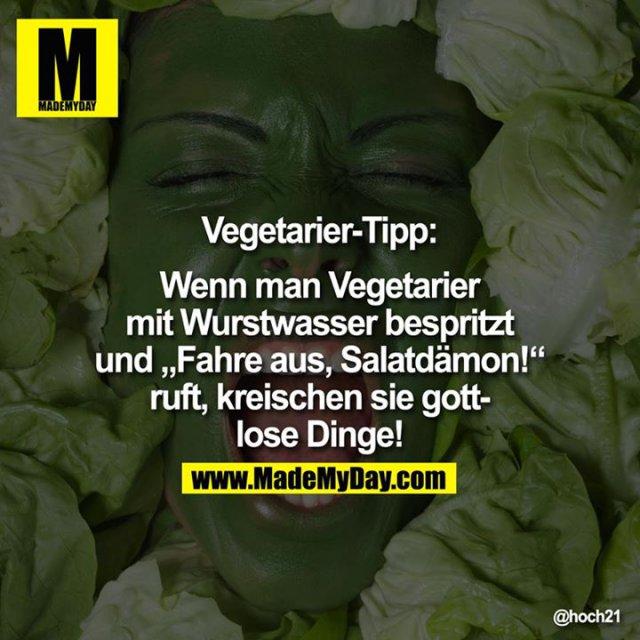 Sprüche Gegen Vegetarier Am Liebsten Sprüche In Bildern