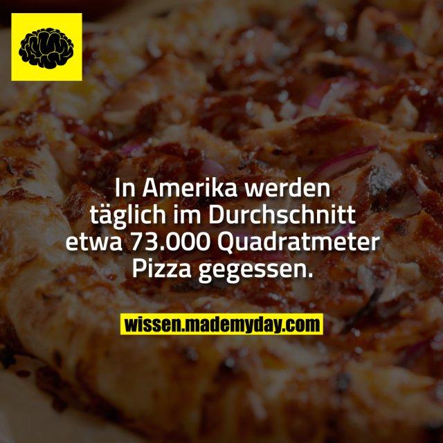 In Amerika werden täglich im Durchschnitt etwa 73.000 Quadratmeter Pizza gegessen.