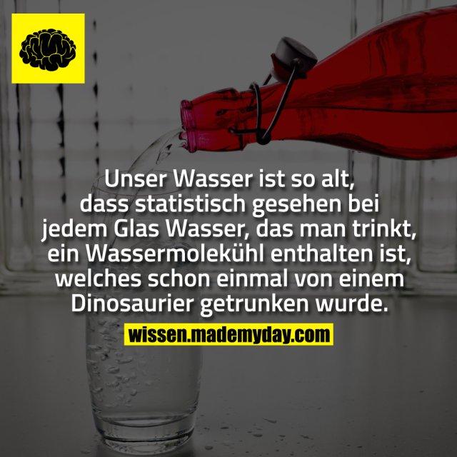 Unser Wasser ist so alt, dass statistisch gesehen bei jedem Glas Wasser, das man trinkt, ein Wassermolekühl enthalten ist, welches schon einmal von einem Dinosaurier getrunken wurde.