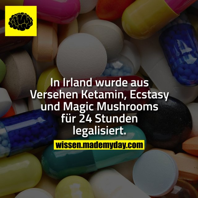 In Irland wurde aus Versehen Ketamin, Ecstasy und Magic Mushrooms für 24 Stunden legalisiert.