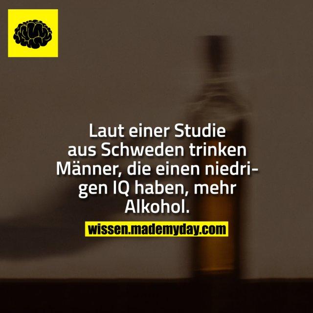Laut einer Studie aus Schweden trinken Männer, die einen niedrigen IQ haben, mehr Alkohol.