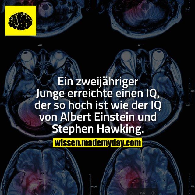 Ein zweijähriger Junge erreichte einen IQ, der so hoch ist wie der IQ von Albert Einstein und Stephen Hawking.