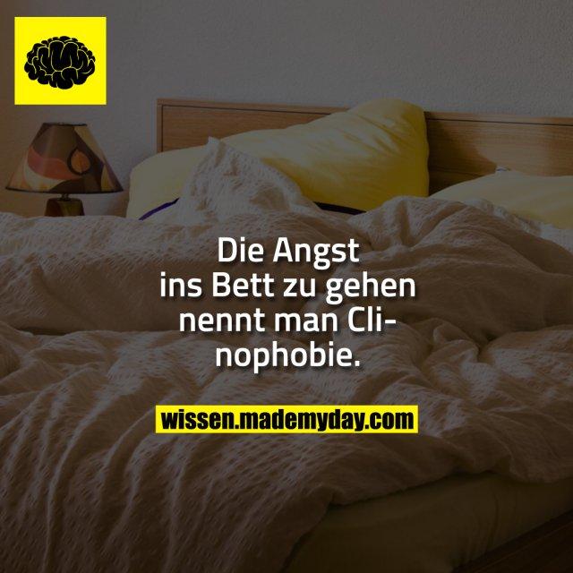 Die Angst ins Bett zu gehen nennt man Clinophobie.