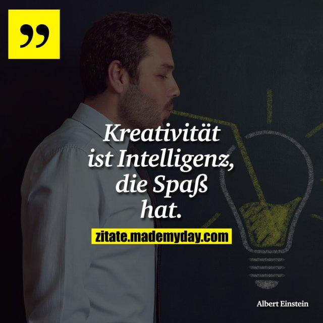 Kreativität ist Intelligenz, die Spaß hat.