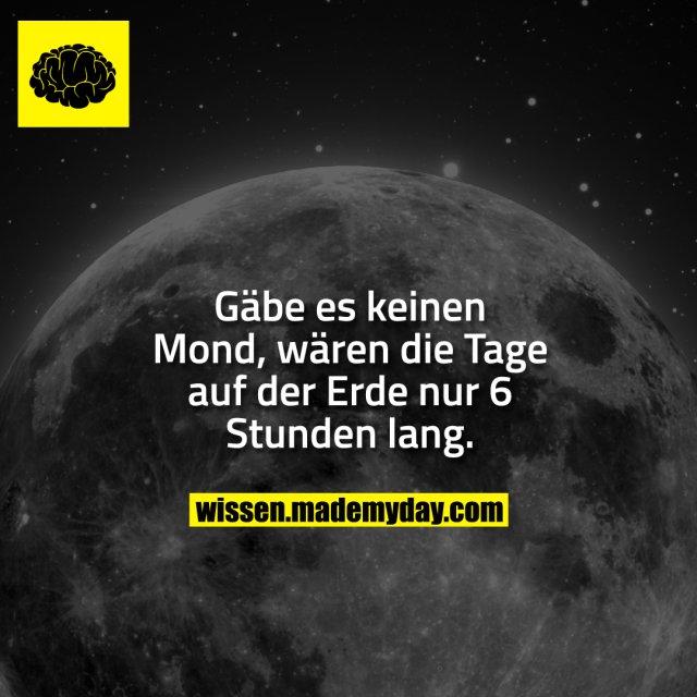 Gäbe es keinen Mond, wären die Tage auf der Erde nur 6 Stunden lang.