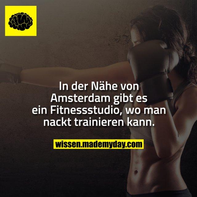 In der Nähe von Amsterdam gibt es ein Fitnessstudio, wo man nackt trainieren kann.