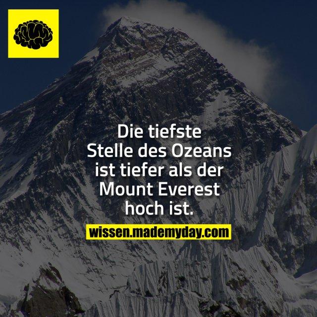 Die tiefste Stelle des Ozeans ist tiefer als der Mount Everest hoch ist.