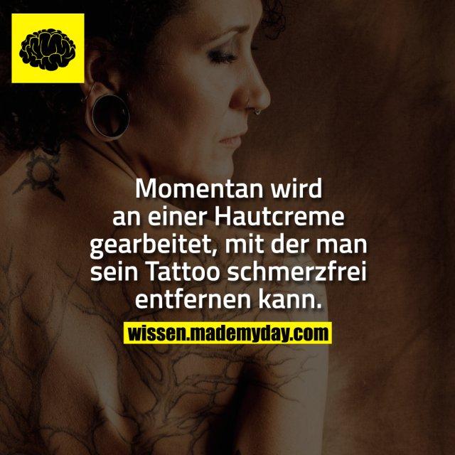 Momentan wird an einer Hautcreme gearbeitet, mit der man sein Tattoo schmerzfrei entfernen kann.