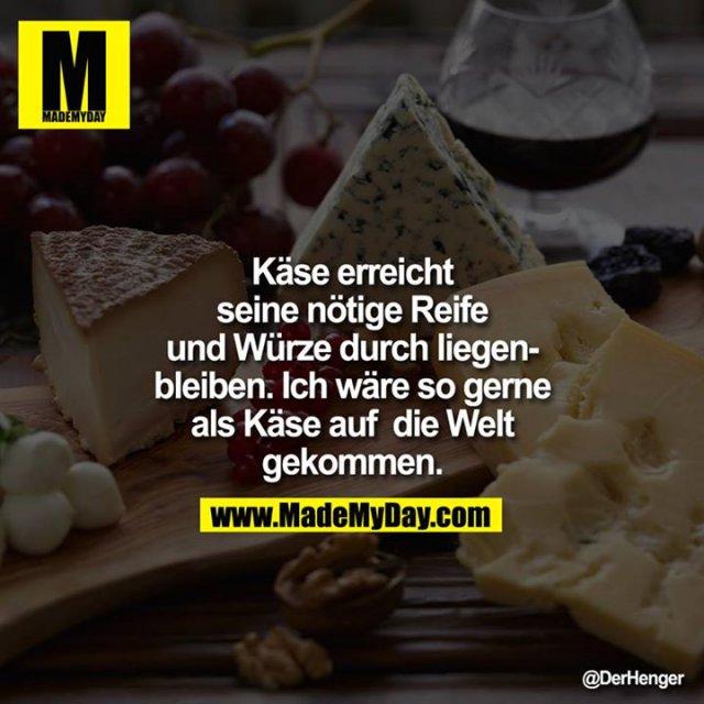 Käse erreicht seine nötige Reife und Würze durch liegenbleiben. <br /> Ich wäre so gerne als Käse auf<br />  die Welt gekommen.