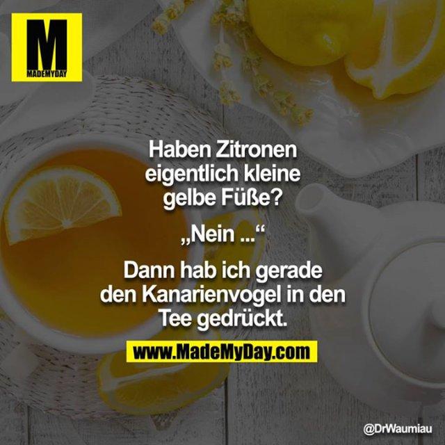 """Haben Zitronen eigentlich kleine gelbe Füße?<br /> <br /> """"Nein..""""<br /> <br /> Dann hab eich gerade den Kanarienvogel in den Tee gedrückt."""""""