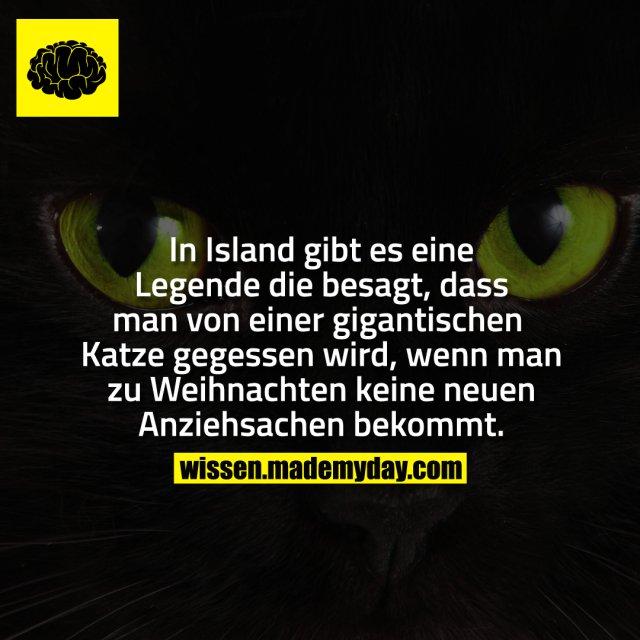 In Island gibt es eine Legende die besagt, dass man von einer gigantischen Katze gegessen wird, wenn man zu Weihnachten keine neuen Anziehsachen bekommt.