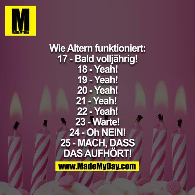 Wie Altern funktioniert:<br /> 17 - Bald Volljährig!<br /> 18 - Yeah!<br /> 19 - Yeah!<br /> 20 - Yeah!<br /> 21 - Yeah! <br /> 22 - Yeah!<br /> 23 - Warte!<br /> 24 - Oh NEIN!<br /> 25 - MACH, DASS DAS AUFHÖRT!