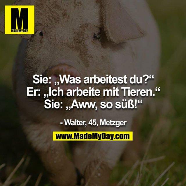 """Sie: """"Was arbeitest du?""""<br /> Er: """"Ich arbeite mit Tieren.""""<br /> Sie: """"Aaww, so süss!!""""<br /> - Walter, 45, Metzger"""