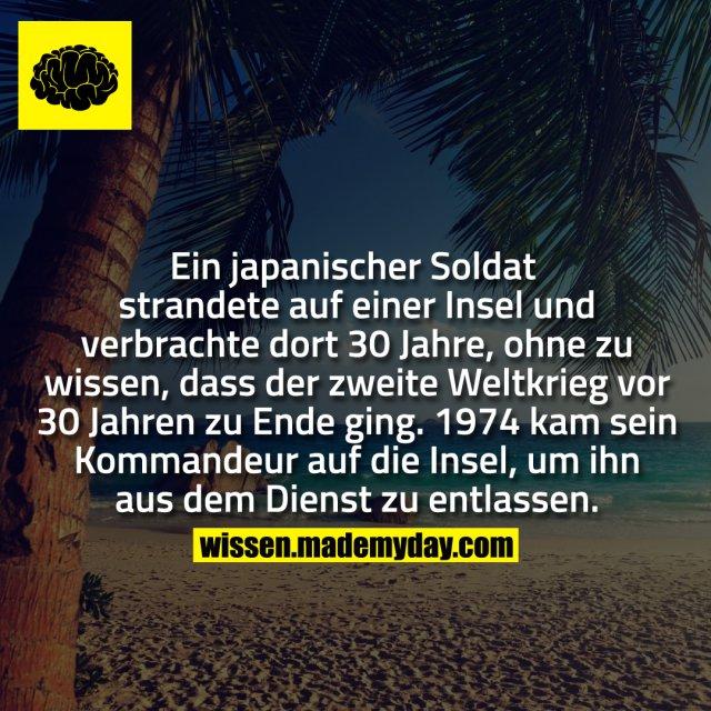 Ein japanischer Soldat strandete auf einer Insel und verbrachte dort 30 Jahre, ohne zu wissen, dass der zweite Weltkrieg vor 30 Jahren zu Ende ging. 1974 kam sein Kommandeur auf die Insel, um ihn aus dem Dienst zu entlassen.