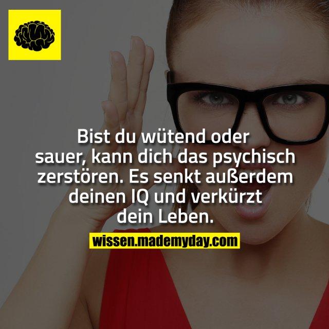 Bist du wütend oder sauer, kann dich das psyschich zerstören. Es senkt außerdem deinen IQ und verkürzt dein Leben.