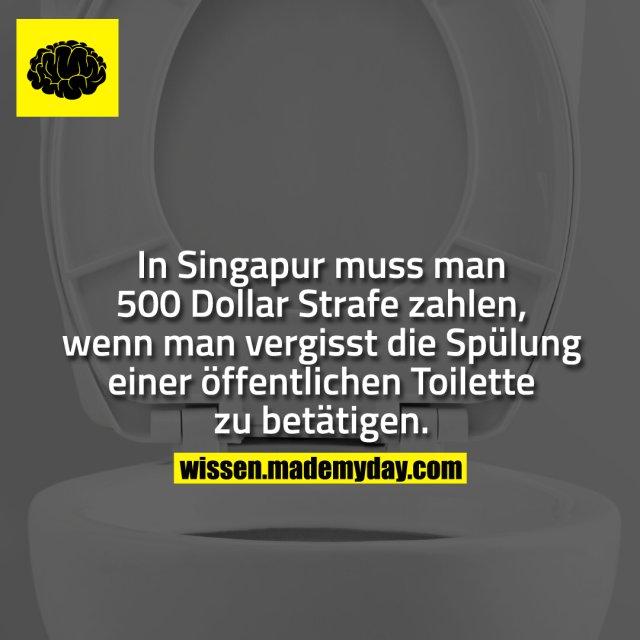In Singapur muss man 500 Dollar Strafe zahlen, wenn man vergisst die Spülung einer öffentlichen Toilette zu betätigen.