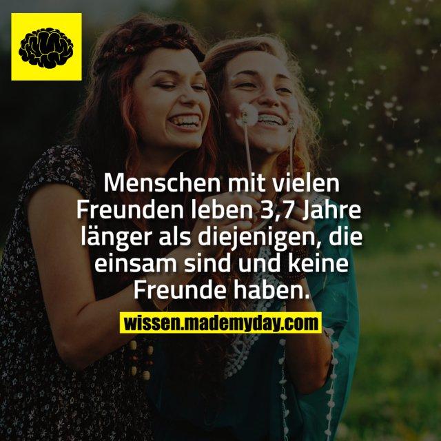 Menschen mit vielen Freunden leben 3,7 Jahre länger als diejenigen, die einsam sind und keine Freunde haben.
