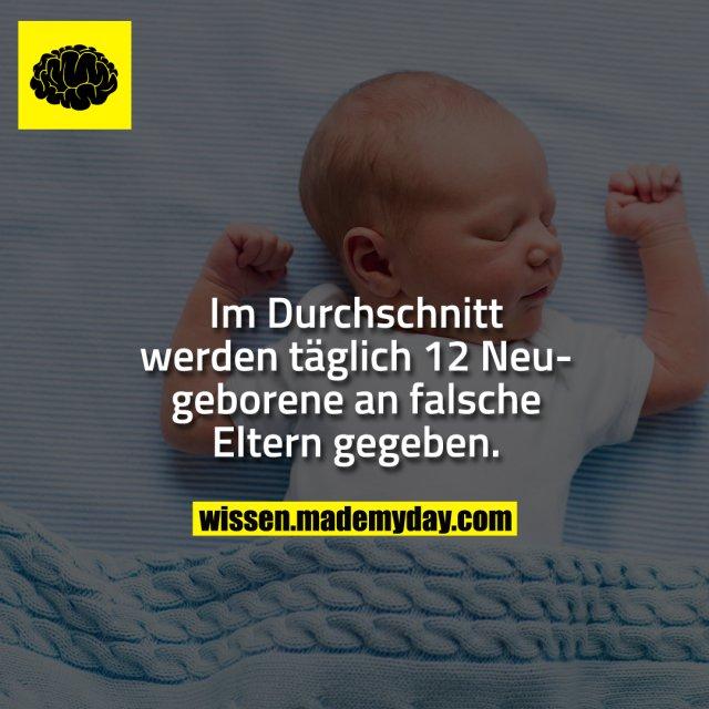 Im Durchschnitt werden täglich 12 Neugeborene an falsche Eltern gegeben.
