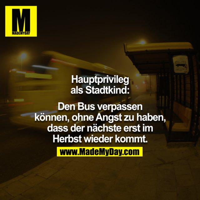 Hauptprivileg als Stadtkind:<br /> <br /> Den Bus verpassen können, ohne Angst zu haben, dass der nächste erst im Herbst wieder kommt.<br /> <br />