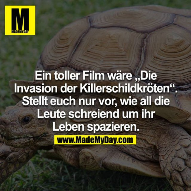 Ein toller Film wäre die Invasion der Killerschildkröten. Stellt euch nur vor wie all die Leute schreiend um ihr Leben spazieren.<br />