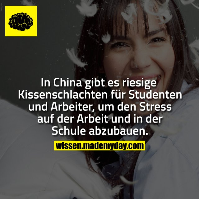 In China gibt es riesige Kissenschlachten für Studenten und Arbeiter, um den Stress auf der Arbeit und in der Schule abzubauen.