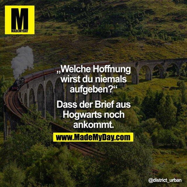 """""""Welche Hoffnung wirst du niemals aufgeben?"""" - """"Dass der Brief aus Hogwarts noch ankommt."""""""