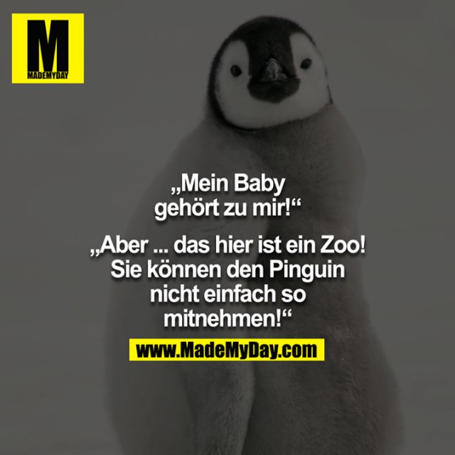 """""""Mein Baby gehört zu mir!"""" - """"ABER... das hier ist ein Zoo! Sie können den Pinguin nicht einfach so mitnehmen!"""""""