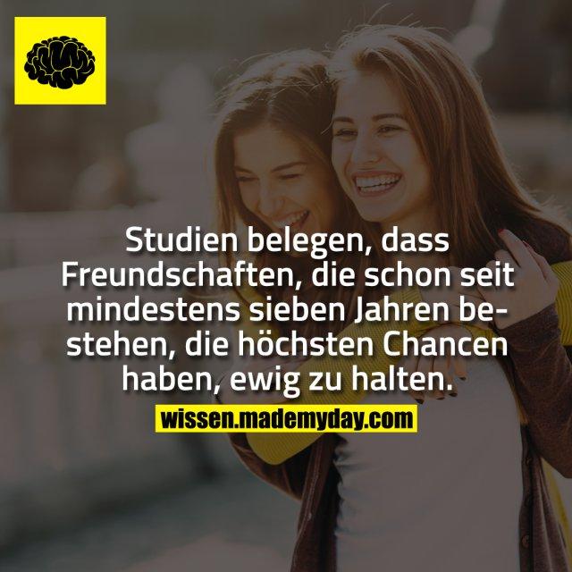 Studien belegen, dass Freundschaften, die schon seit mindestens sieben Jahren bestehen, die höchsten Chancen haben, ewig zu halten.