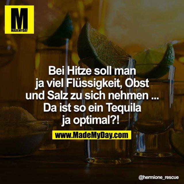 Bei Hitze soll man ja viel Flüssigkeit, Obst und Salz zu sich nehmen.... Da ist so ein Tequila ja optimal?! <br />