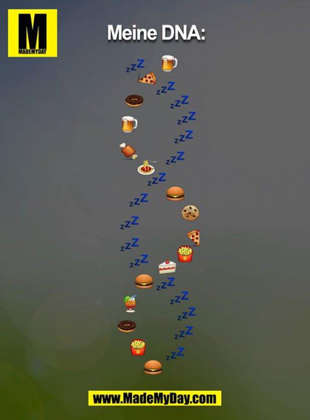 Meine DNA: schlafen, Bier, Pizza, Essen, Trinken, Burger, Donut