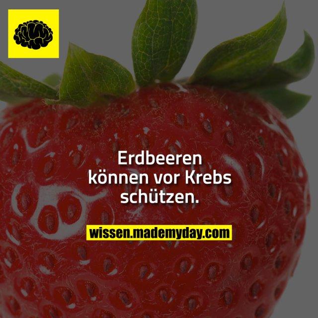 Erdbeeren können vor Krebs schützen.