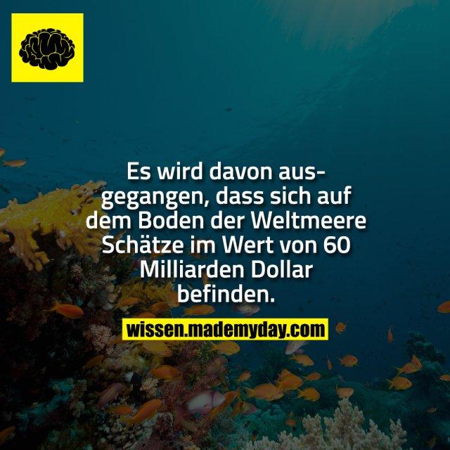 Es wird davon ausgegangen, dass sich auf dem Boden der Weltmeere Schätze im Wert von 60 Milliarden Dollar befinden.