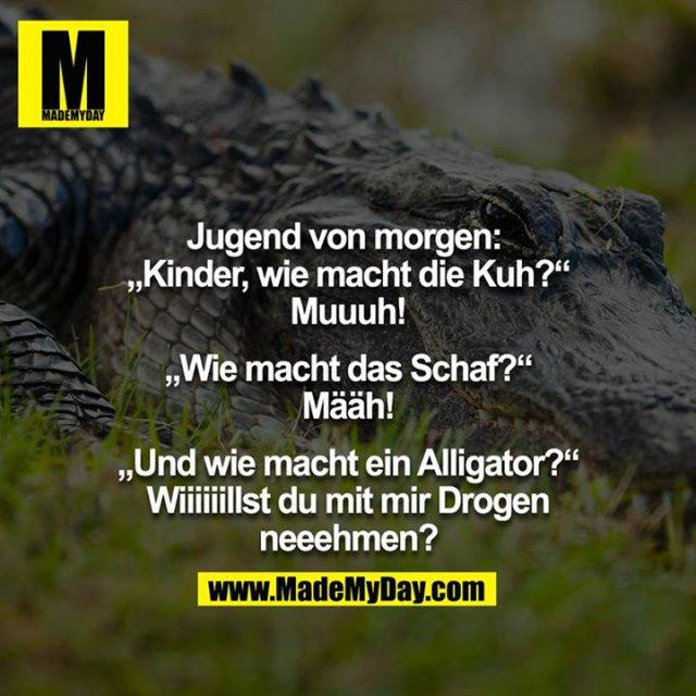 """Jugend von morgen: <br /> """"Kinder, wie macht die Kuh?""""<br /> """"Muuuh""""<br /> """"Wie macht das Schaf?""""<br /> """"Bääh""""<br /> """"Und wie macht ein Alligator?""""<br /> """"Wiiiiiilst du mit mir Drogen neeehmen?"""" <br />"""