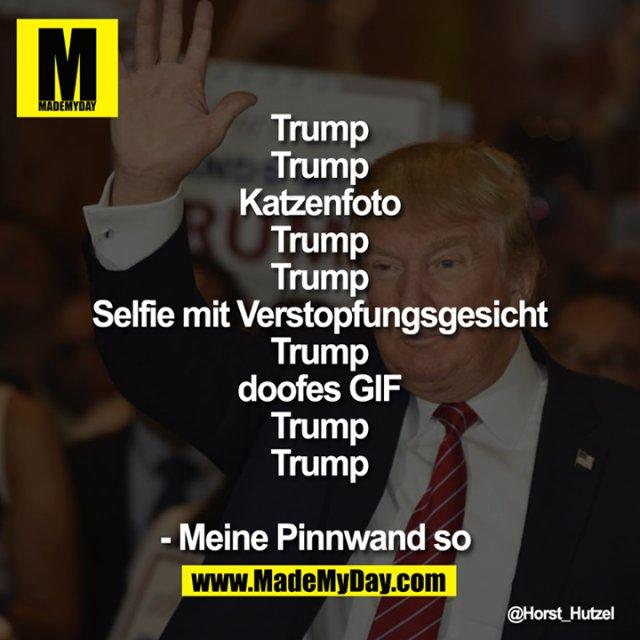 Trump<br /> Trump<br /> Trump<br /> Katzenfoto<br /> Trump<br /> Trump<br /> Selfie mit Verstopfungsgesicht<br /> Trump<br /> Trump<br /> doofes GIF<br /> Trump<br /> Trump<br /> <br /> - Meine Pinnwand so