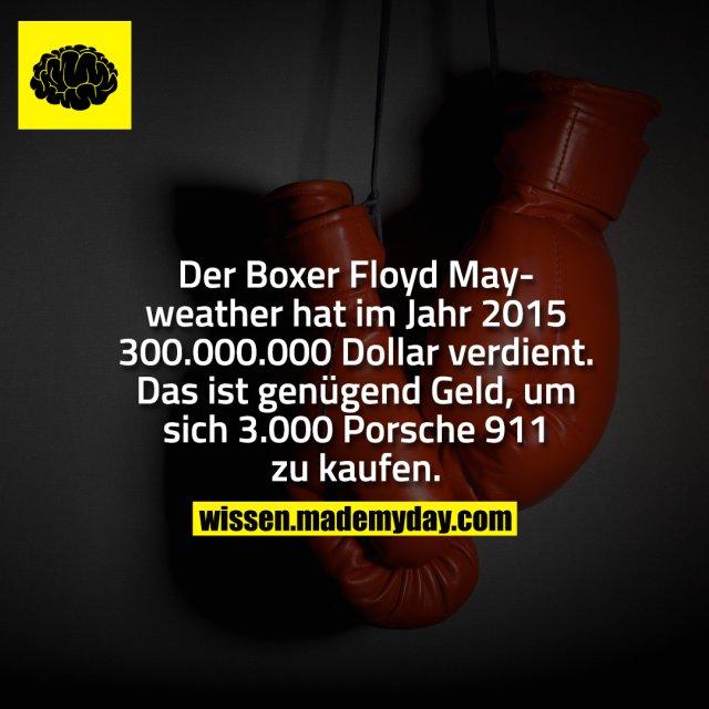 Der Boxer Floyd Mayweather hat im Jahr 2015 300.000.000 Dollar verdient. Das ist genügend Geld, um sich 3.000 Porsche 911 zu kaufen.