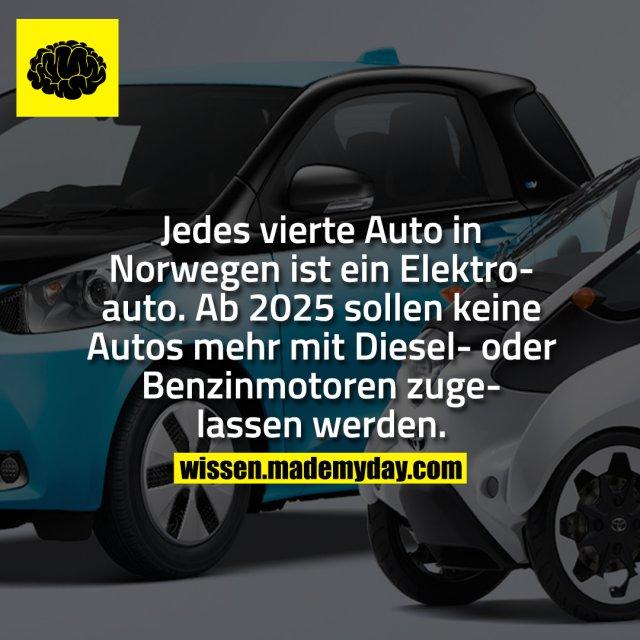 Jedes vierte Auto in Norwegen ist ein Elektroauto. Ab 2025 sollen keine Autos mehr mit Diesel- oder Benzinmotoren zugelassen werden.