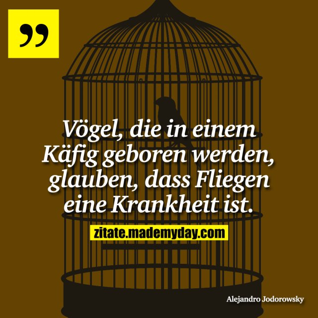Vögel, die in einem Käfig geboren werden, glauben, dass Fliegen eine Krankheit ist.