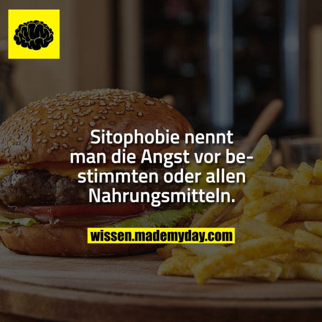 Sitophobie nennt man die Angst vor bestimmten oder allen Nahrungsmitteln.