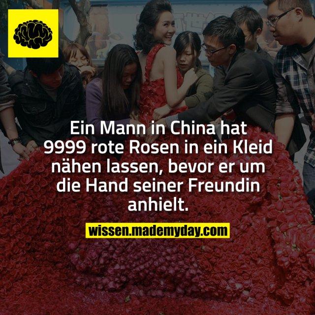 Ein Mann in China hat 9999 rote Rosen in ein Kleid nähen lassen, bevor er um die Hand seiner Freundin anhielt.