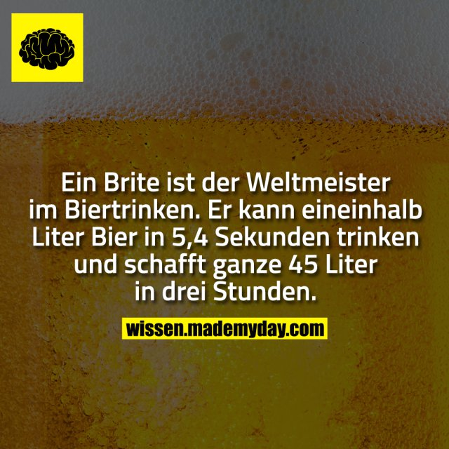 Ein Brite ist der Weltmeister im Biertrinken. Er kann eineinhalb Liter Bier in 5,4 Sekunden trinken und schafft ganze 45 Liter in drei Stunden.