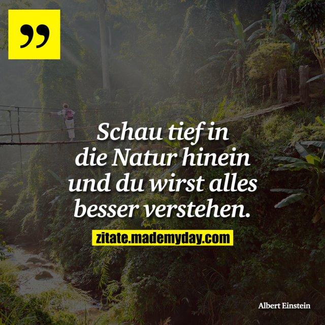 Schau tief in die Natur hinein und du wirst alles besser verstehen.