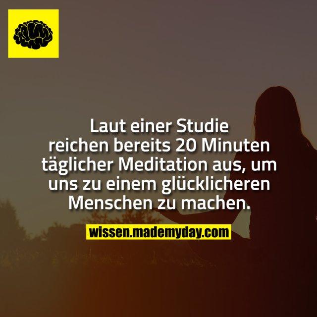Laut einer Studie reichen bereits 20 Minuten täglicher Meditation aus, um uns zu einem glücklicheren Menschen zu machen.