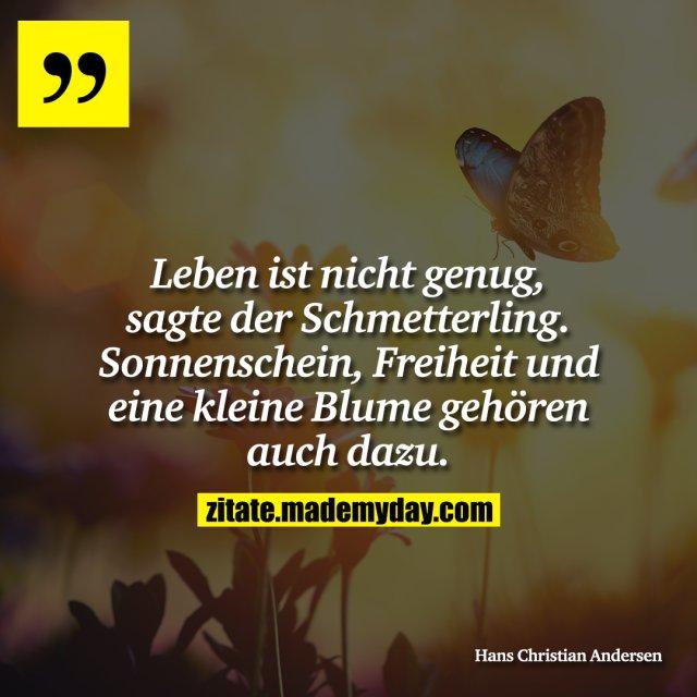 Leben ist nicht genug, sagte der Schmetterling. Sonnenschein, Freiheit und eine kleine Blume gehören auch dazu.