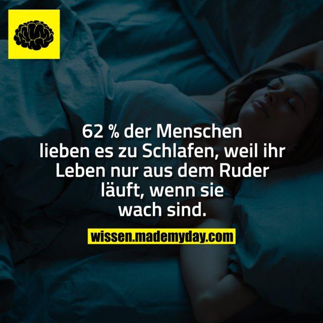 62 % der Menschen lieben es zu Schlafen, weil ihr Leben nur aus dem Ruder läuft, wenn sie wach sind.