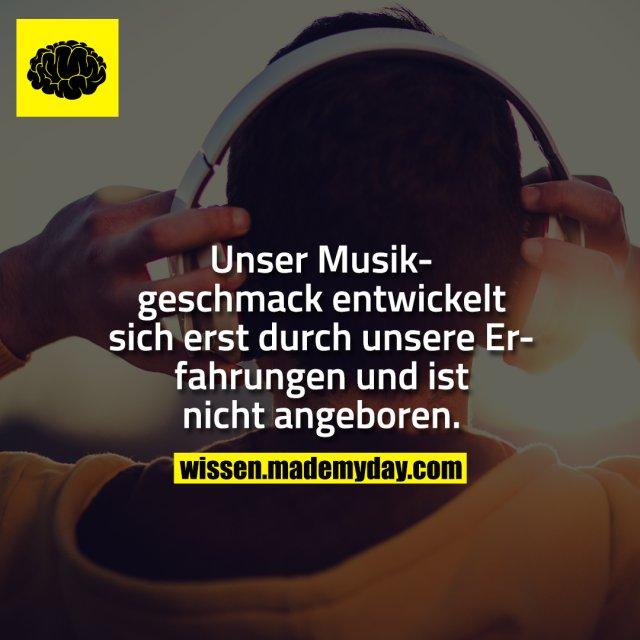 Unser Musikgeschmack entwickelt sich erst durch unsere Erfahrungen und ist nicht angeboren.