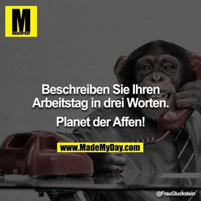 Beschreiben Sie Ihren Arbeitstag in drei Worten.<br /> <br /> Planet der Affen!