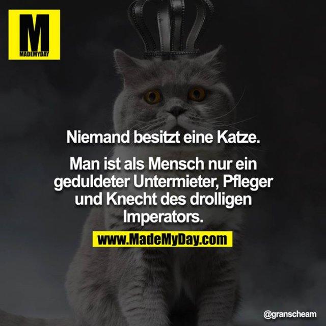 Niemand besitzt eine Katze.<br /> <br /> Man ist als Mensch nur ein geduldeter Untermieter, Pfleger und Knecht des drolligen Imperators.